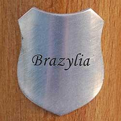 sztandar_kraj_brazylia.jpg